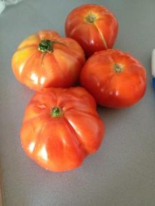 Belles tomates bio